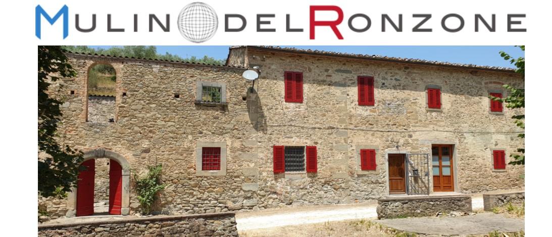 immagine progetto 'Centro d'arte Mulino del Ronzone'